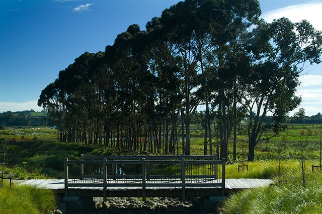 Parks and Playgrounds at Lakes Tauranga
